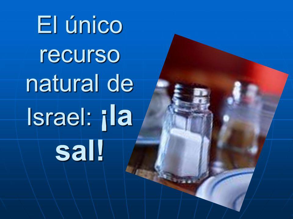 El único recurso natural de Israel: ¡la sal!