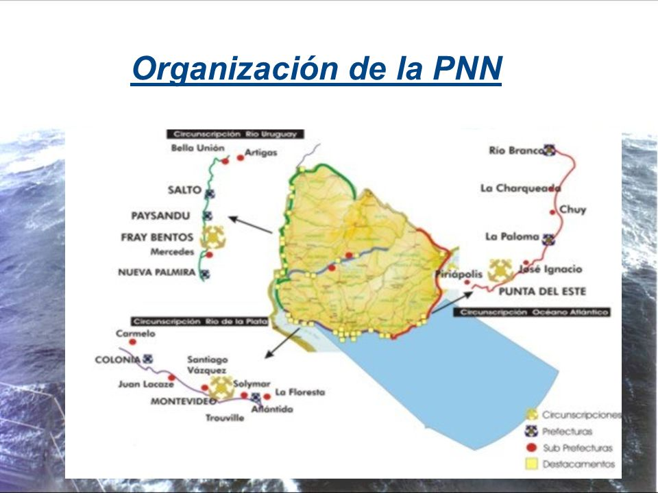 Organización de la PNN 6 6