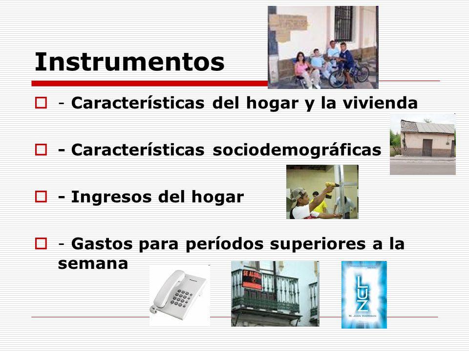 Instrumentos - Características del hogar y la vivienda