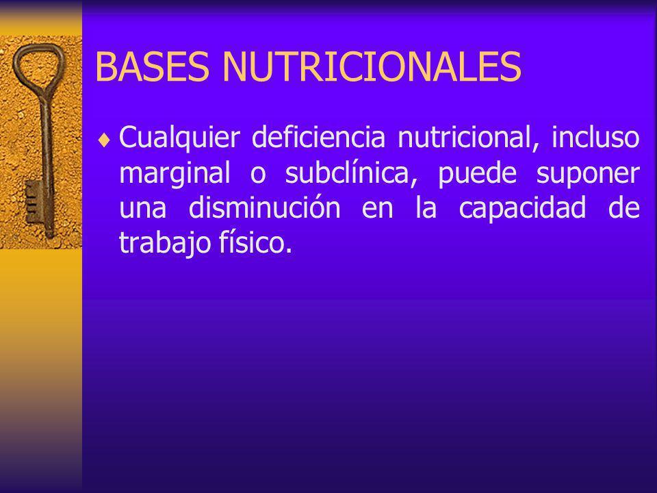 BASES NUTRICIONALES