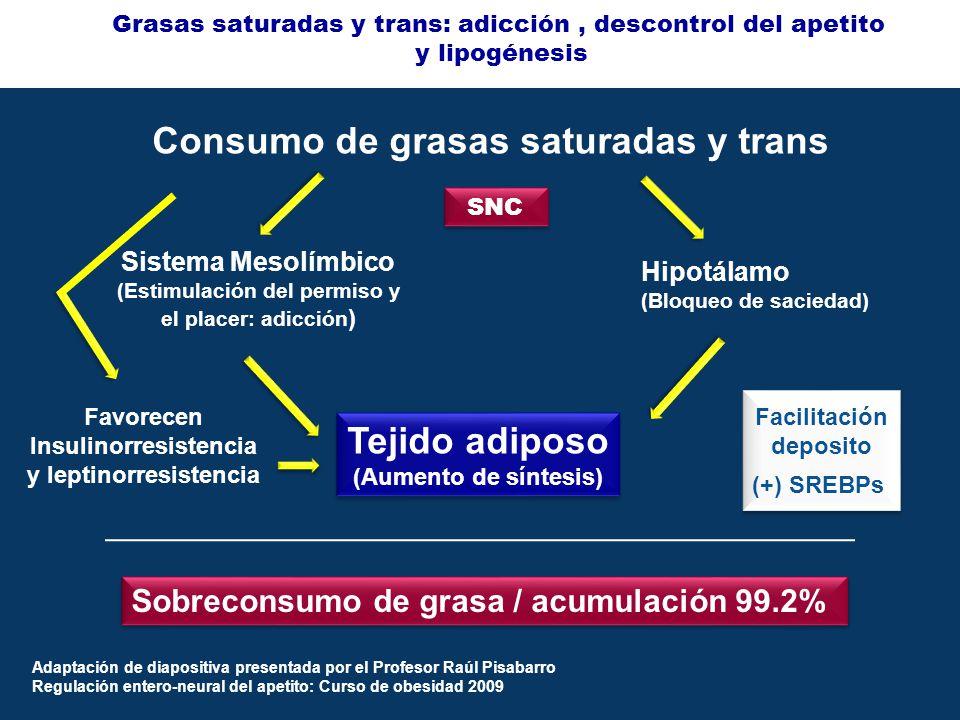 Consumo de grasas saturadas y trans