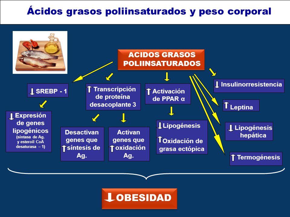 Ácidos grasos poliinsaturados y peso corporal