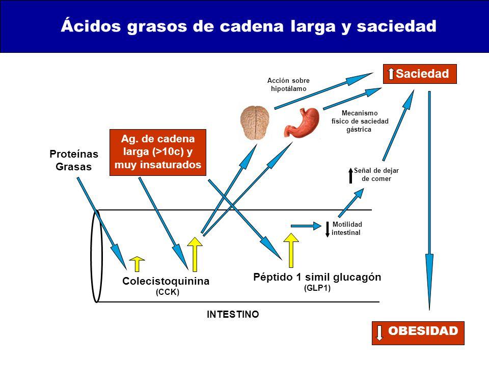 Péptido 1 simil glucagón