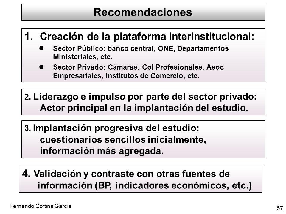Recomendaciones Creación de la plataforma interinstitucional: