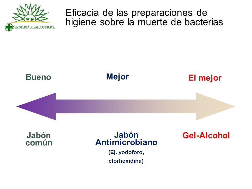 Eficacia de las preparaciones de higiene sobre la muerte de bacterias