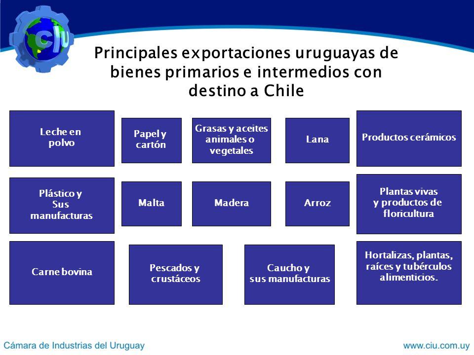 Principales exportaciones uruguayas de bienes primarios e intermedios con destino a Chile