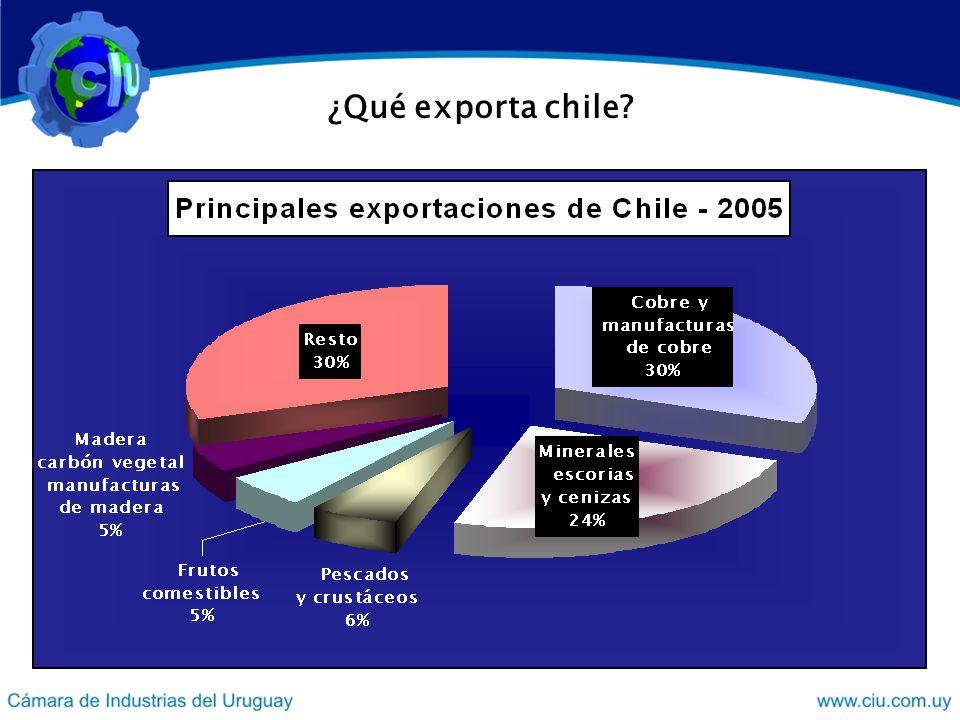 ¿Qué exporta chile