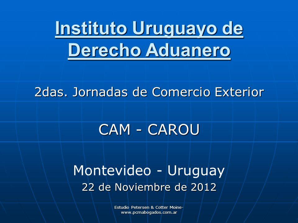 Instituto Uruguayo de Derecho Aduanero