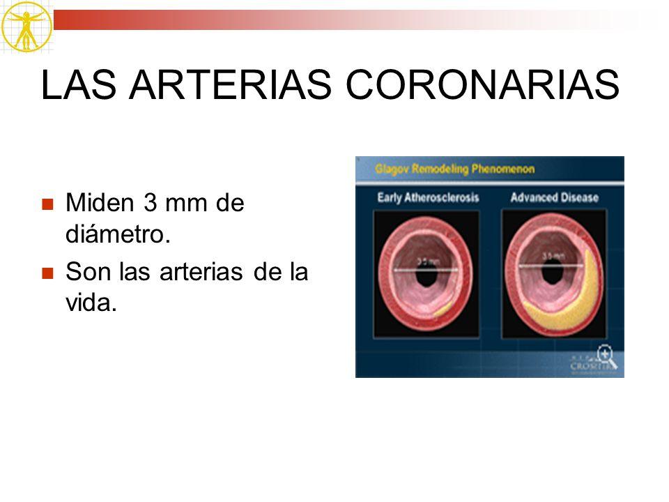 LAS ARTERIAS CORONARIAS
