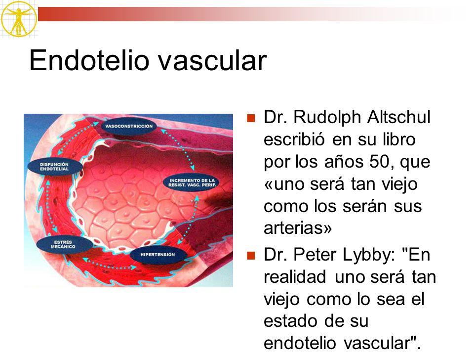 Endotelio vascular Dr. Rudolph Altschul escribió en su libro por los años 50, que «uno será tan viejo como los serán sus arterias»