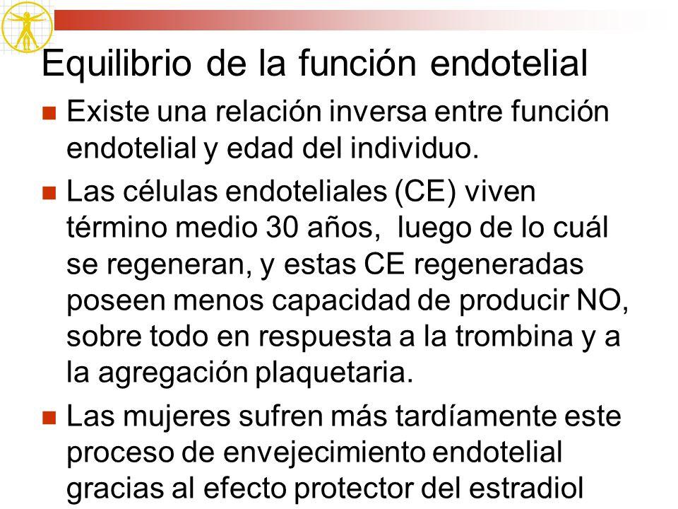 Equilibrio de la función endotelial