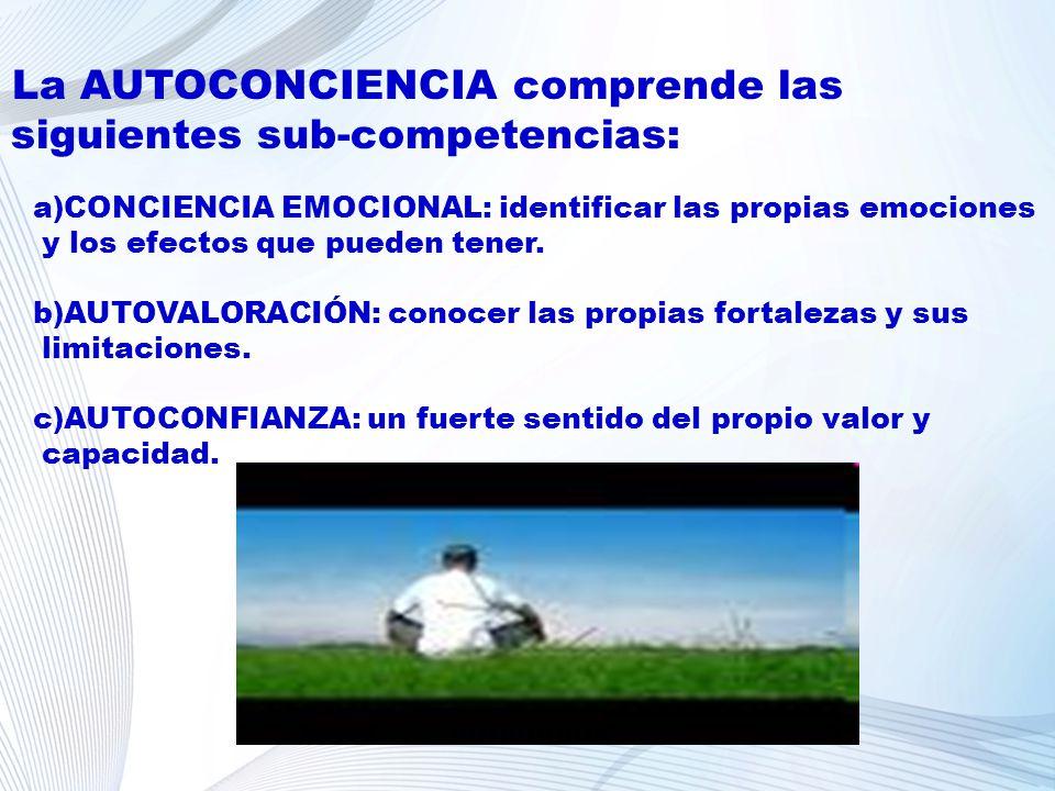 La AUTOCONCIENCIA comprende las siguientes sub-competencias: