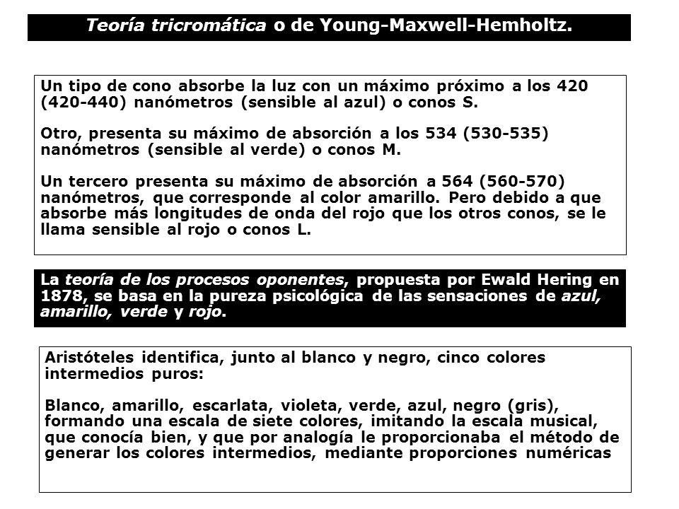 Teoría tricromática o de Young-Maxwell-Hemholtz.