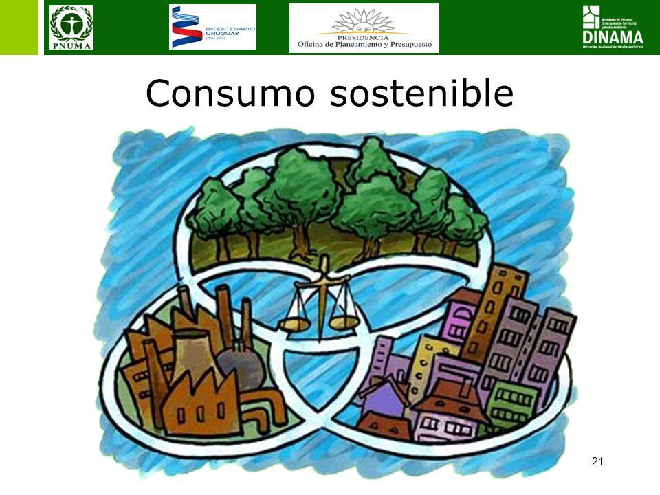 Consumo sostenible