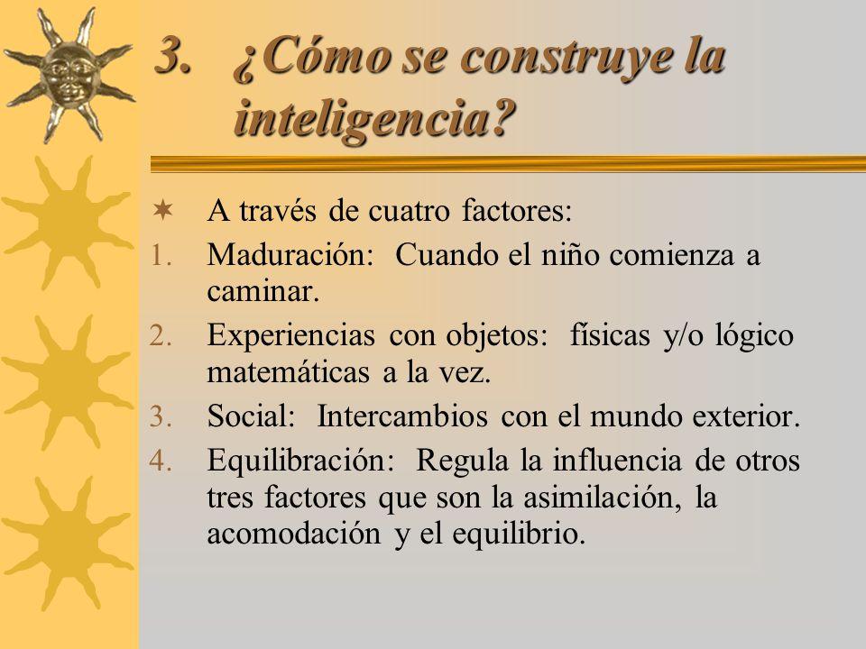 ¿Cómo se construye la inteligencia