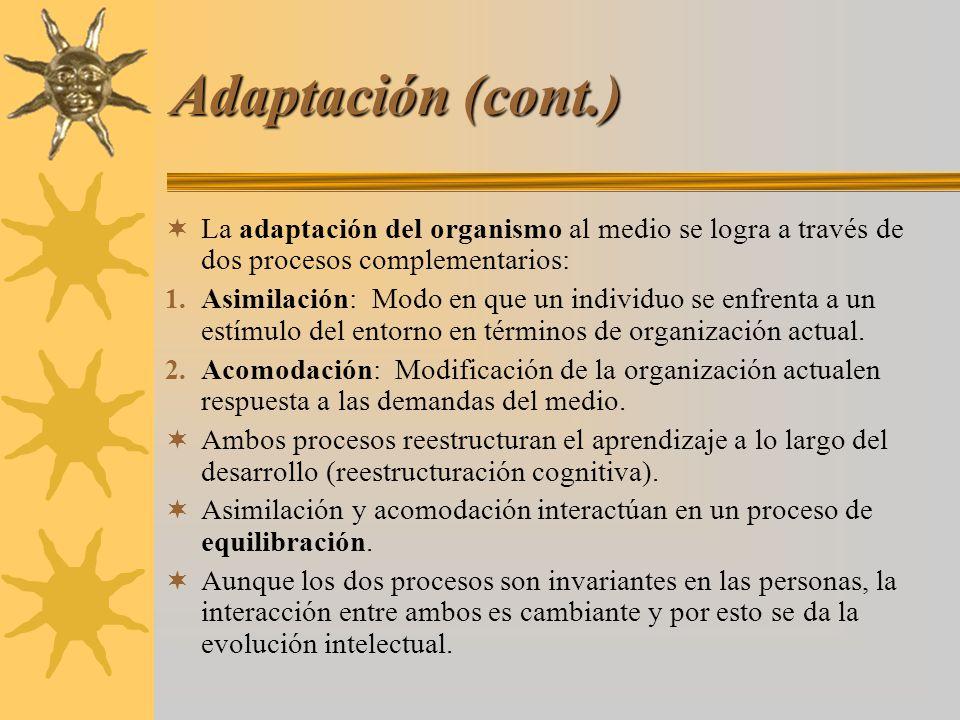 Adaptación (cont.) La adaptación del organismo al medio se logra a través de dos procesos complementarios: