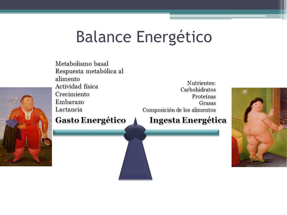 Balance Energético Gasto Energético Ingesta Energética