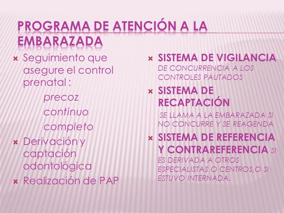 Programa de atención a la embarazada