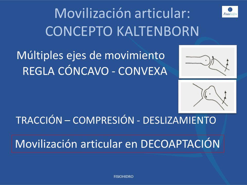 Movilización articular: CONCEPTO KALTENBORN