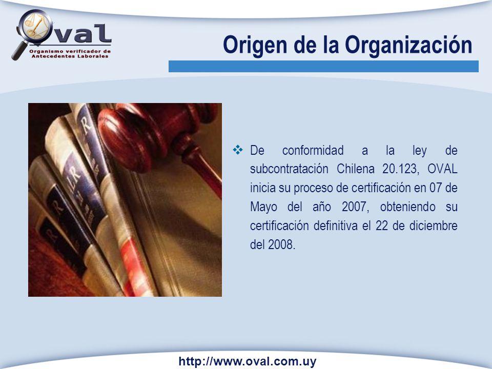 Origen de la Organización