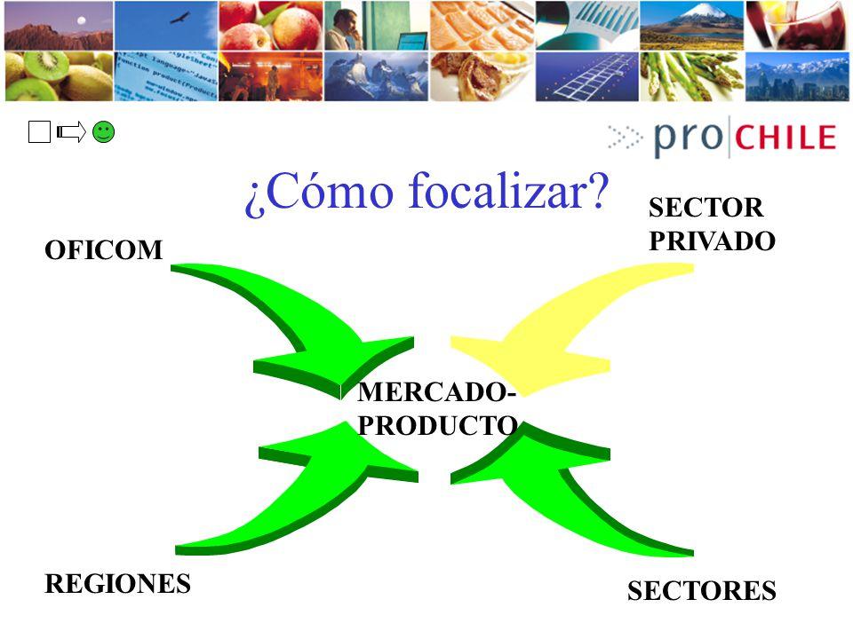 ¿Cómo focalizar SECTOR PRIVADO OFICOM MERCADO-PRODUCTO REGIONES