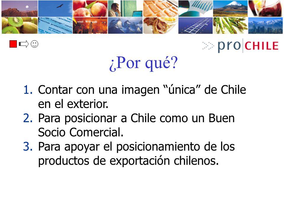 ¿Por qué Contar con una imagen única de Chile en el exterior.