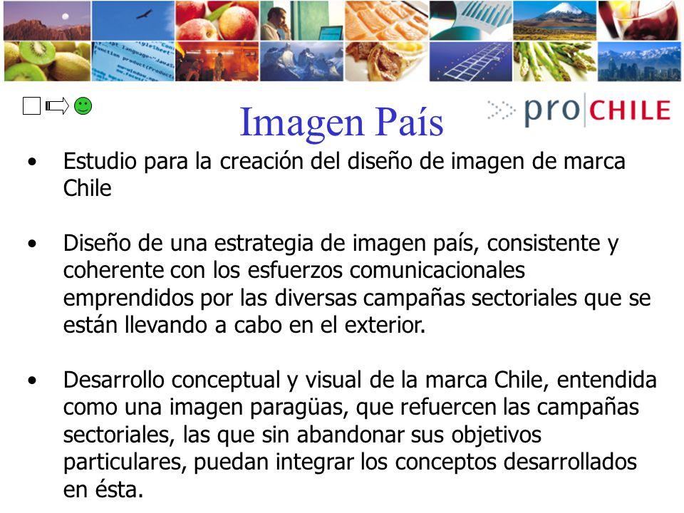 Imagen País Estudio para la creación del diseño de imagen de marca Chile.