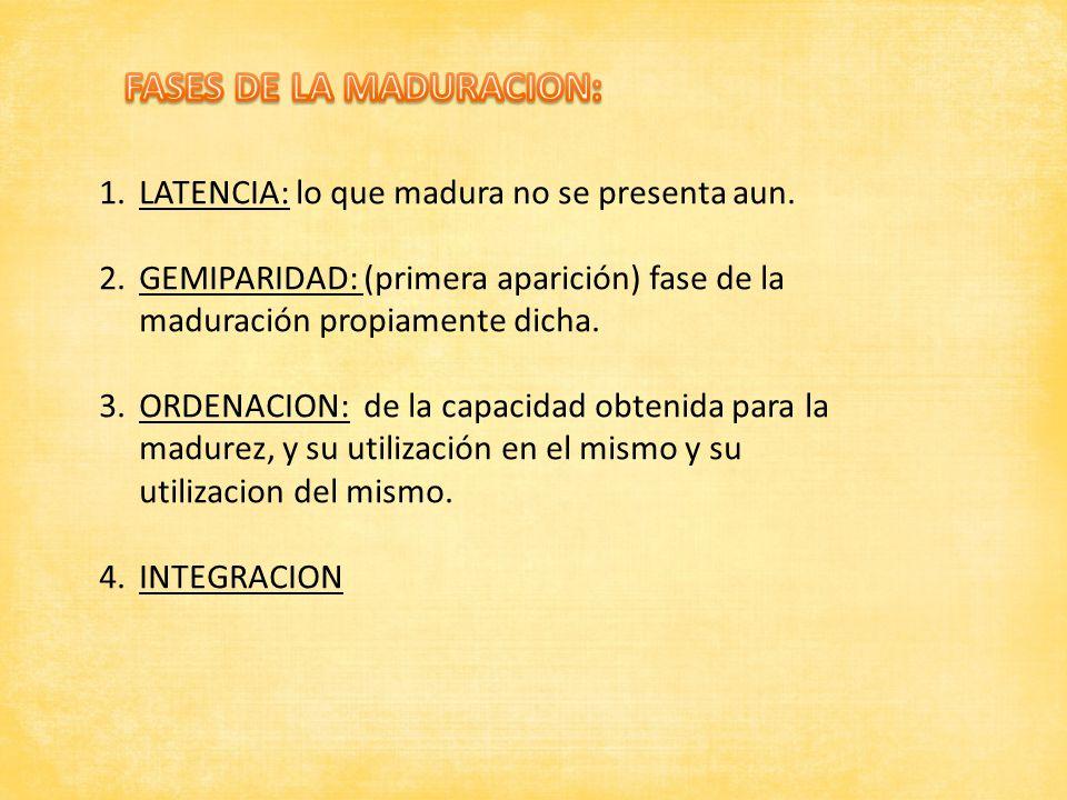 FASES DE LA MADURACION: