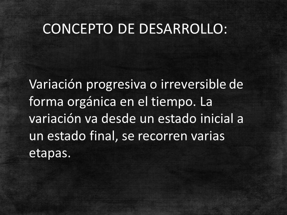 CONCEPTO DE DESARROLLO: