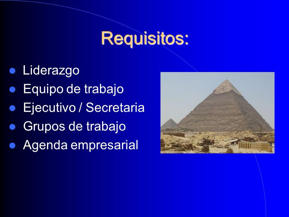 Requisitos: Liderazgo Equipo de trabajo Ejecutivo / Secretaria