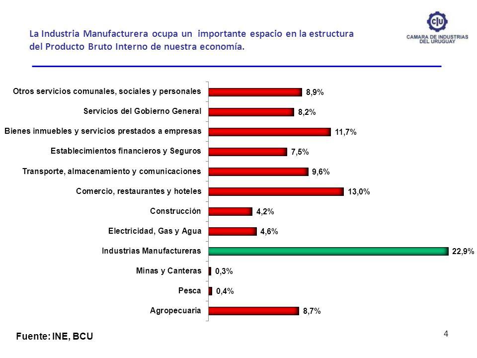 La Industria Manufacturera ocupa un importante espacio en la estructura del Producto Bruto Interno de nuestra economía.