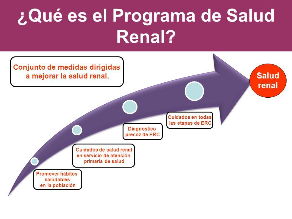 ¿Qué es el Programa de Salud Renal