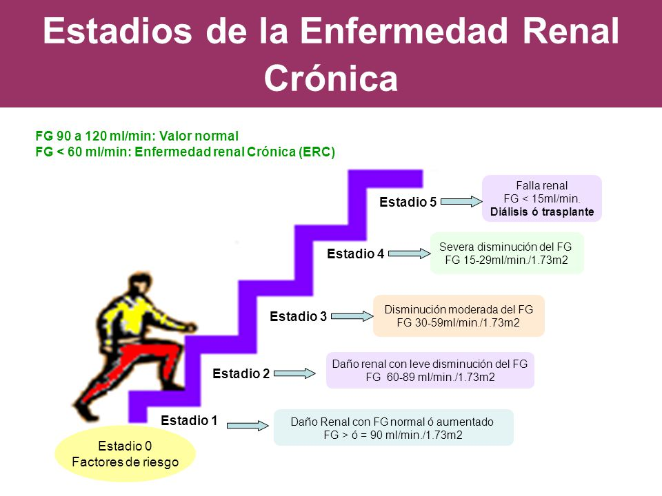 Estadios de la Enfermedad Renal Crónica