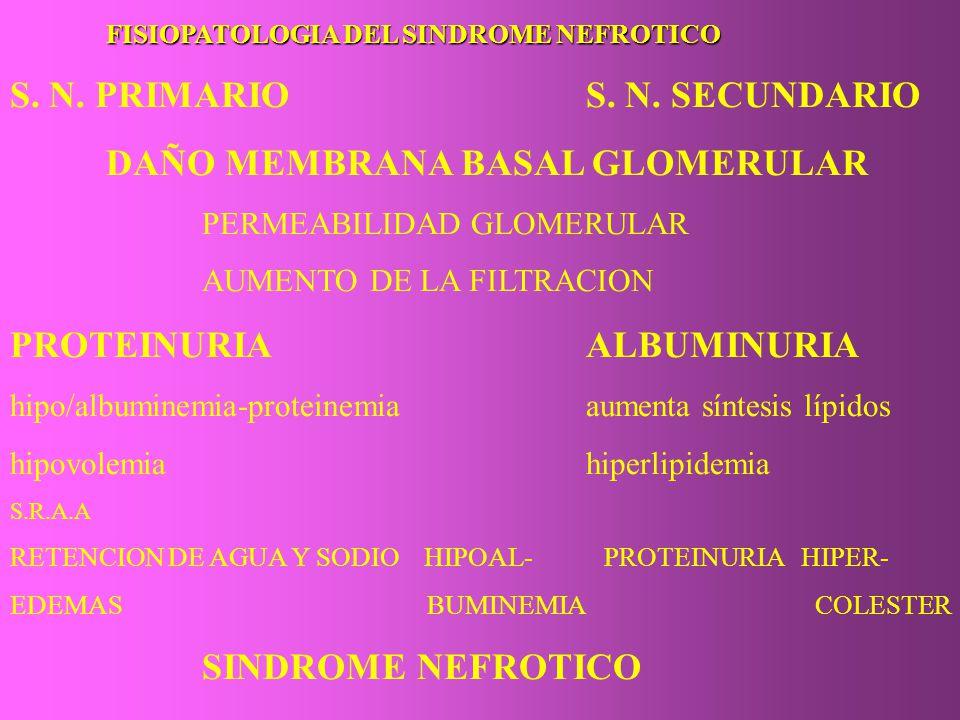 S. N. PRIMARIO S. N. SECUNDARIO DAÑO MEMBRANA BASAL GLOMERULAR