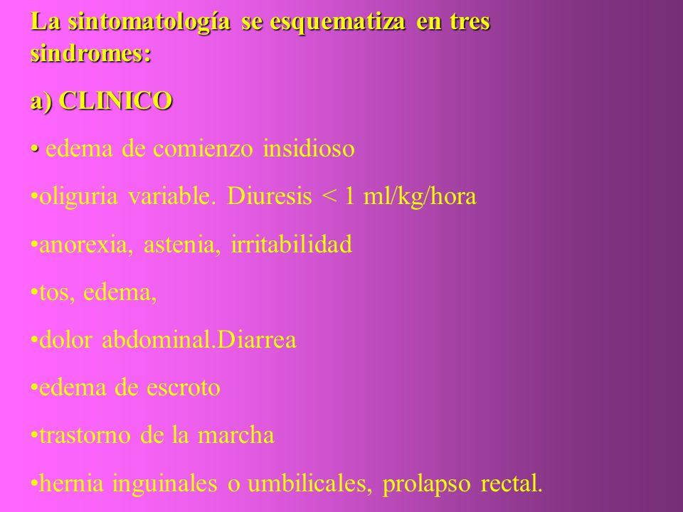 La sintomatología se esquematiza en tres sindromes: