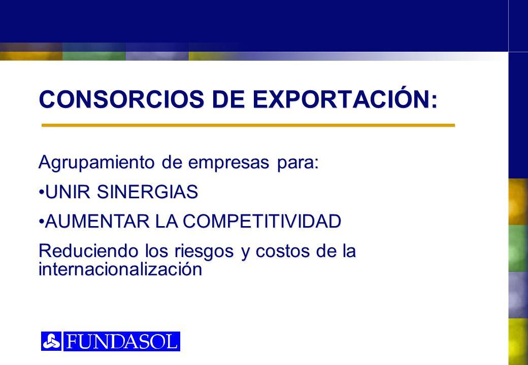 CONSORCIOS DE EXPORTACIÓN: