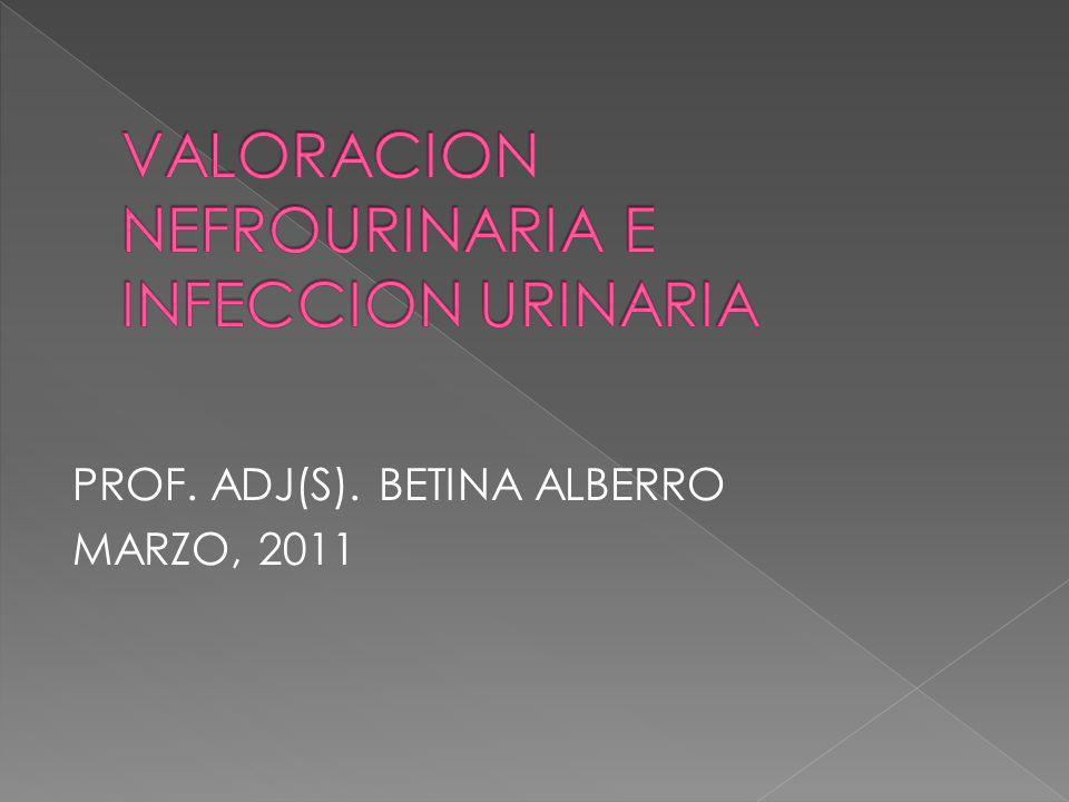 VALORACION NEFROURINARIA E INFECCION URINARIA