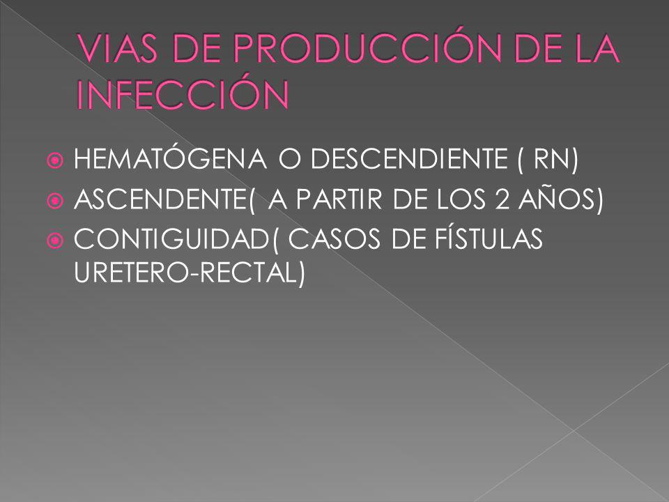 VIAS DE PRODUCCIÓN DE LA INFECCIÓN