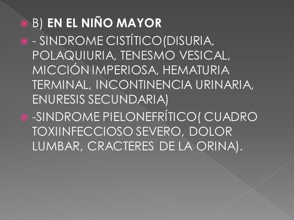 B) EN EL NIÑO MAYOR