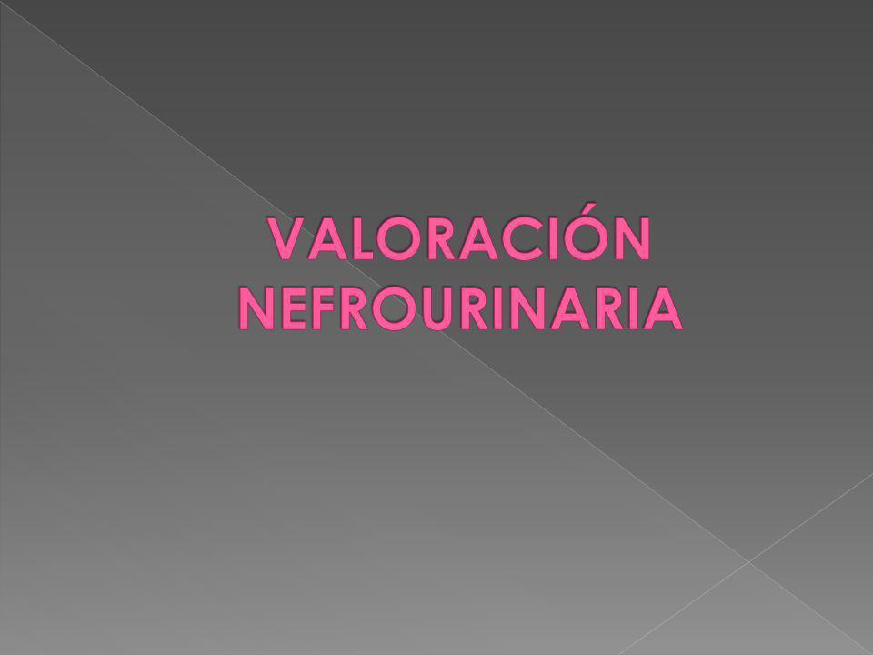 VALORACIÓN NEFROURINARIA
