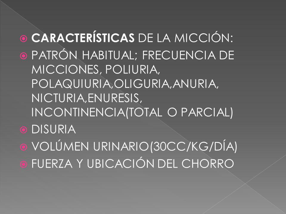 CARACTERÍSTICAS DE LA MICCIÓN: