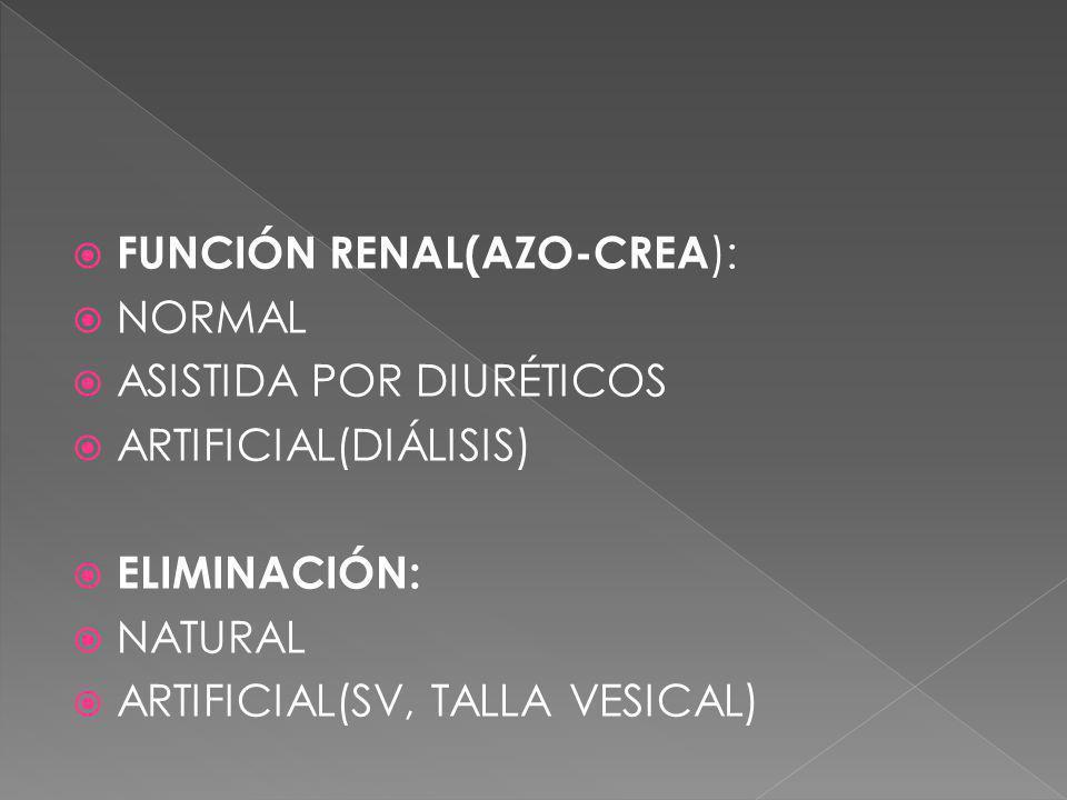FUNCIÓN RENAL(AZO-CREA):