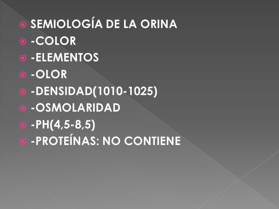 SEMIOLOGÍA DE LA ORINA -COLOR. -ELEMENTOS. -OLOR. -DENSIDAD(1010-1025) -OSMOLARIDAD. -PH(4,5-8,5)