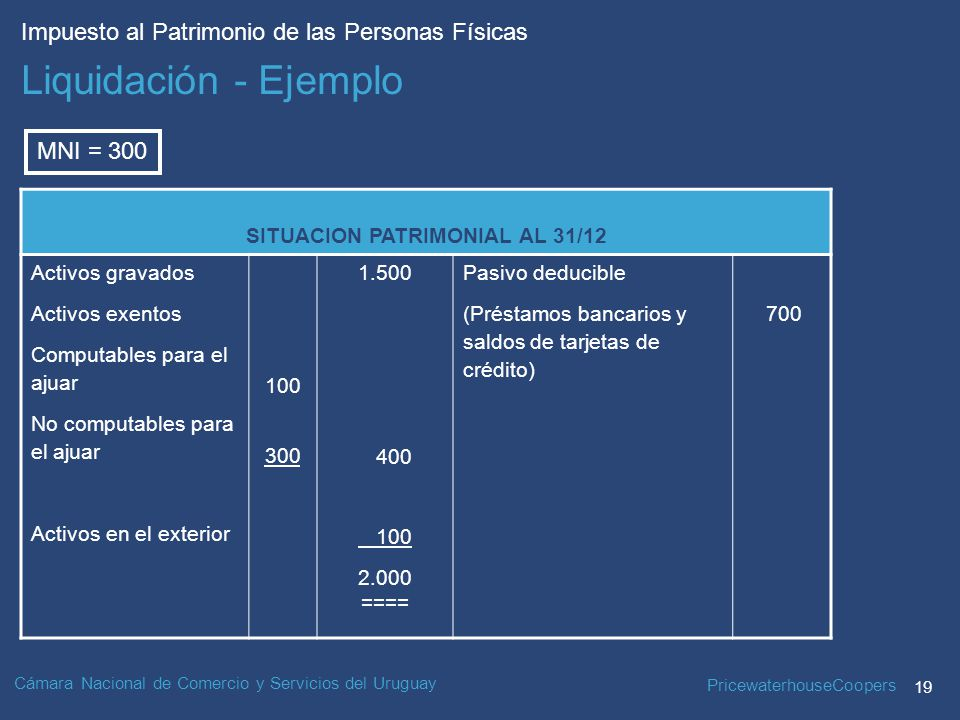 SITUACION PATRIMONIAL AL 31/12
