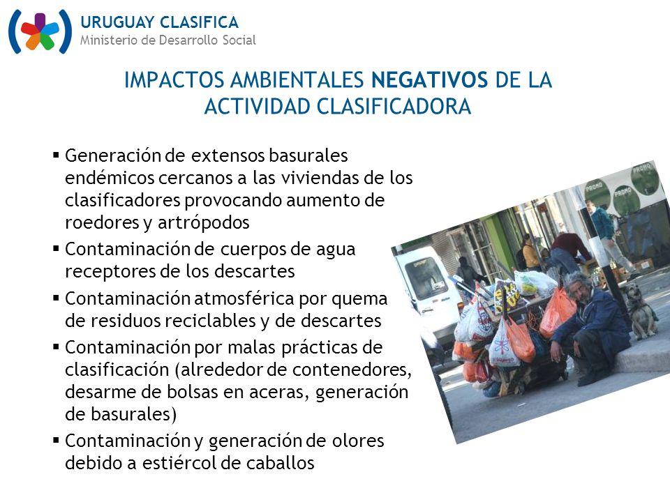 IMPACTOS AMBIENTALES NEGATIVOS DE LA ACTIVIDAD CLASIFICADORA