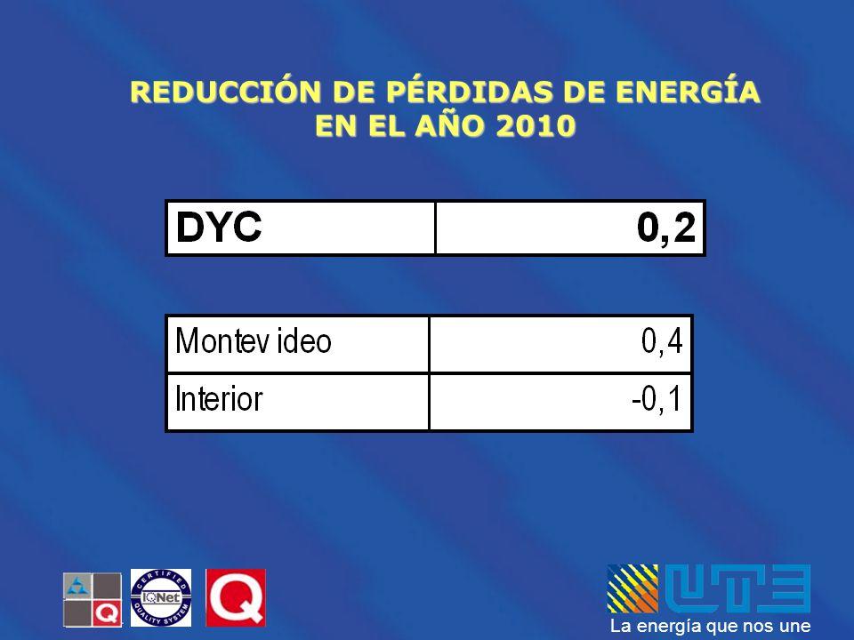 REDUCCIÓN DE PÉRDIDAS DE ENERGÍA EN EL AÑO 2010