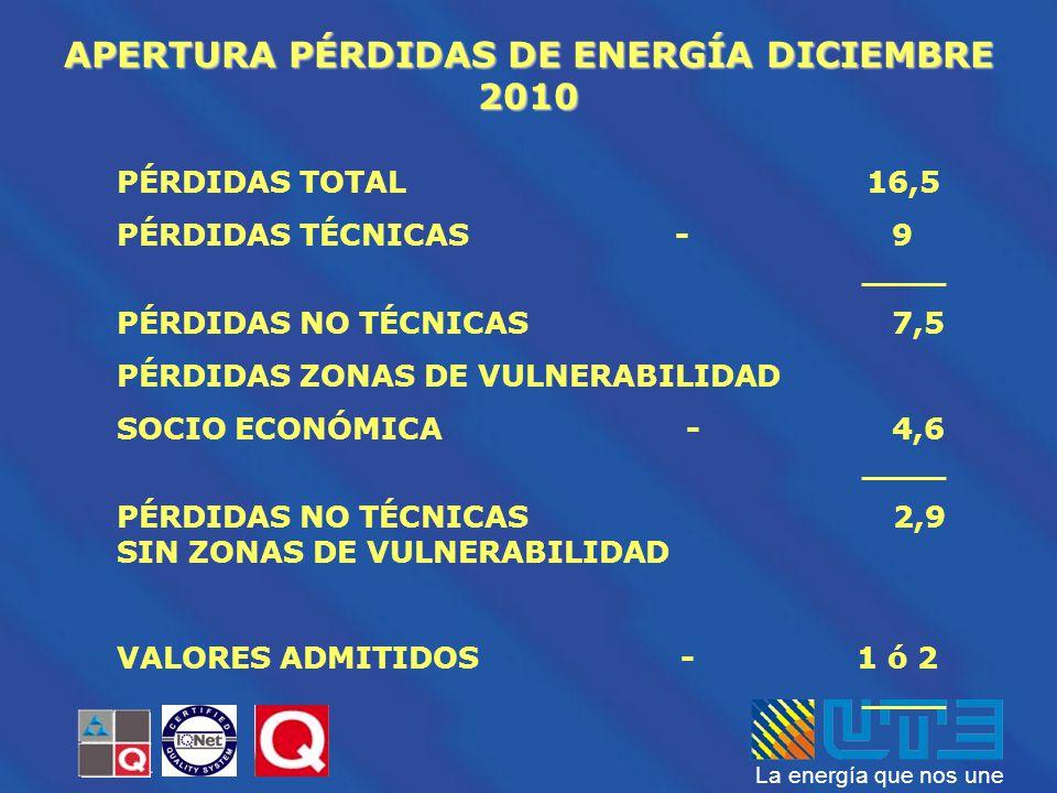 APERTURA PÉRDIDAS DE ENERGÍA DICIEMBRE 2010