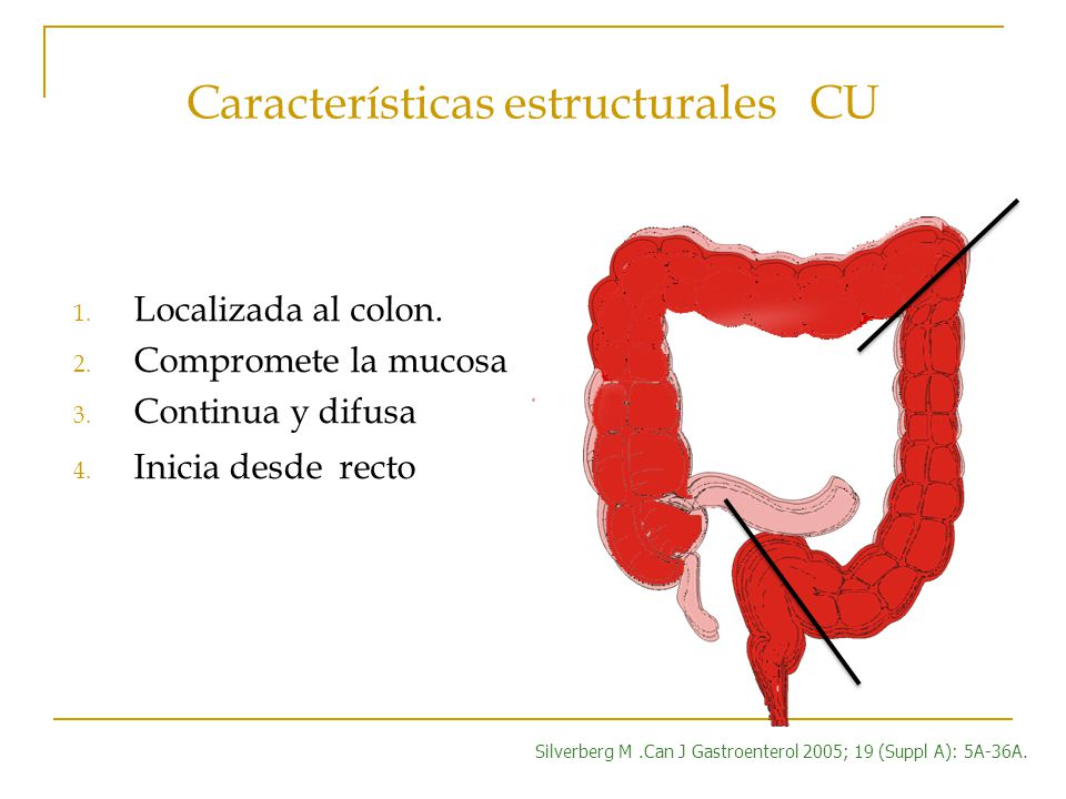 Características estructurales CU