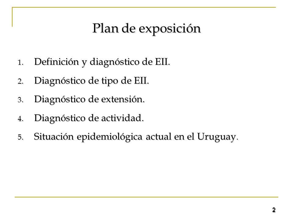 Plan de exposición Definición y diagnóstico de EII.