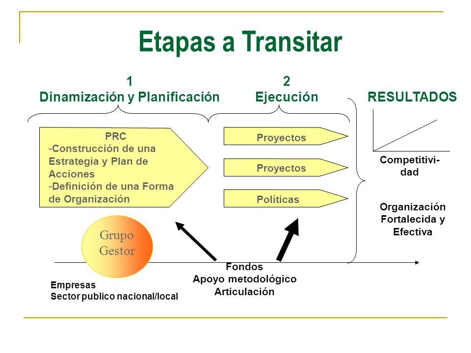 Dinamización y Planificación
